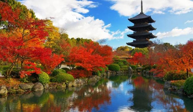 VIAJES A JAPON CON CRUCERO - Buteler en Japón